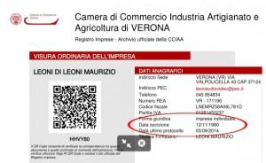 iscrizione camera commercio leoni audio video verona
